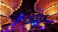 Nightclubs in Saint Tropez